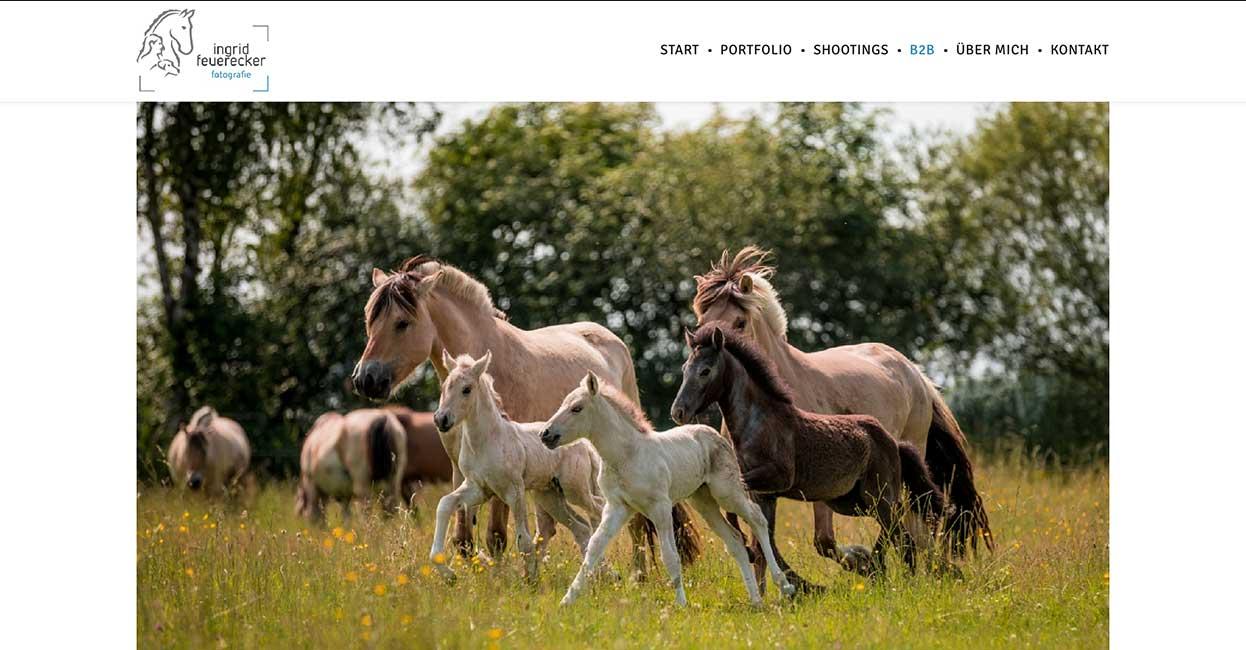 Fotograf Muenchen Wordpress Webseite